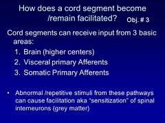 How does a cord segment become or remain facilitated?
