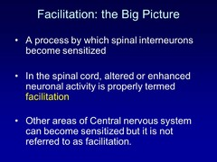 True or False? In the spinal cord, altered or enhanced neuronal activity is properly termed facilitation