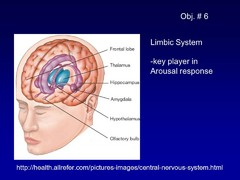 True or False? The Limbic systems is a key player in arousal response
