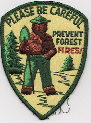 The Smokey Bear educational campaign (of the Forest Service and the National Advertising Council)