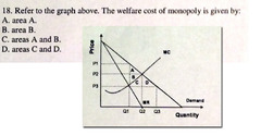 microeconomics minimum wage will cause unemployment