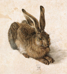This German artist's naturalistic depiction A Young Hare was created using a combination of watercolor and gouache highlighting.